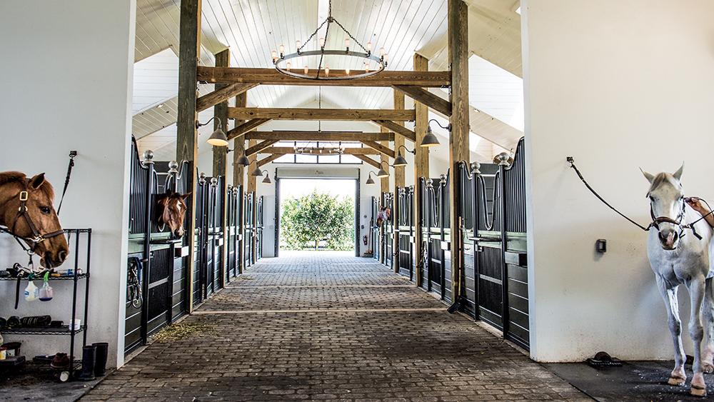 Horse Property Wellington FL
